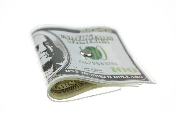 Fake Cash Door Stopper